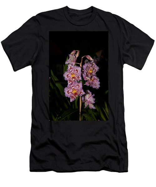 Cattleya Style Orchids Men's T-Shirt (Slim Fit) by Carol Ailles