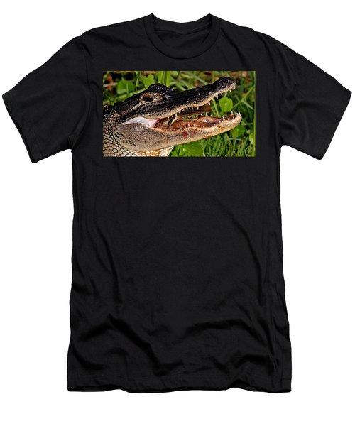 American Alligator Men's T-Shirt (Athletic Fit)