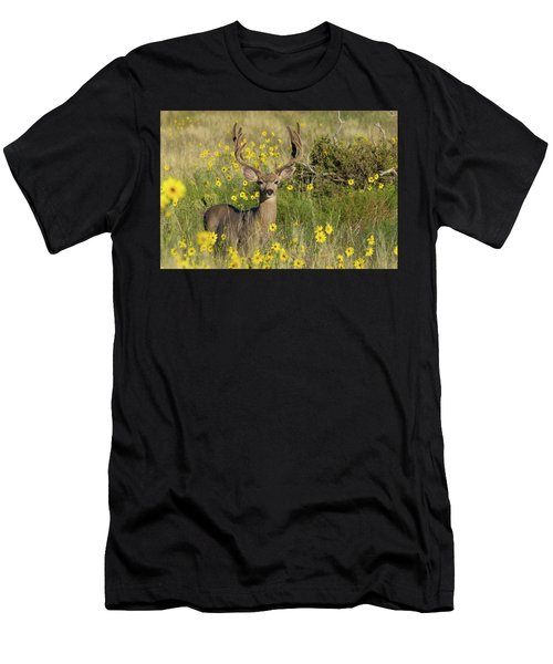 Eight Point Buck In The Grass Lands Of The Great Sand Dunes Men's T-Shirt (Athletic Fit)