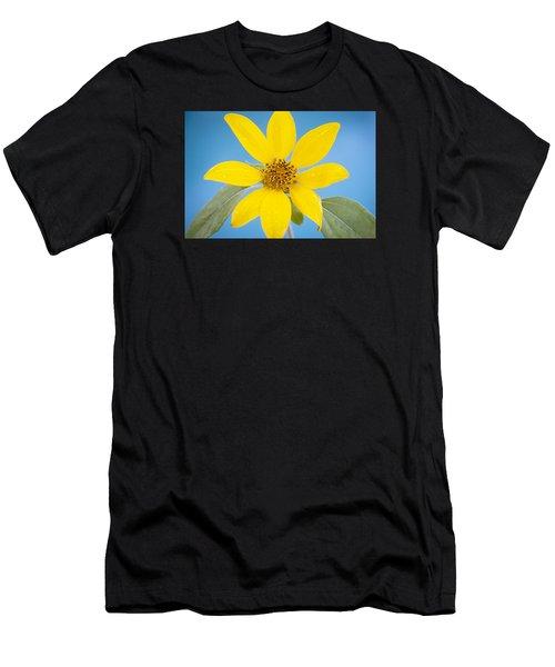 Happy Sunflowers Helianthus  Men's T-Shirt (Athletic Fit)