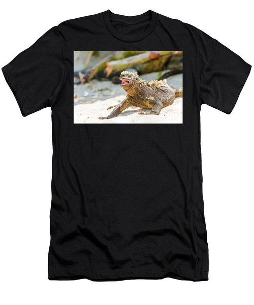 Marine Iguana On Galapagos Islands Men's T-Shirt (Athletic Fit)