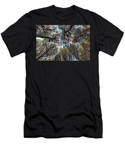 Pinewood Forest, Cecina, Tuscany, Italy Men's T-Shirt (Athletic Fit)