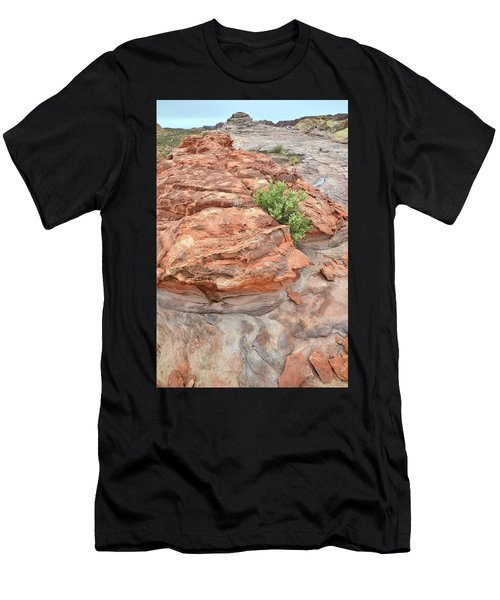 Colorful Sandstone In Valley Of Fire Men's T-Shirt (Athletic Fit)