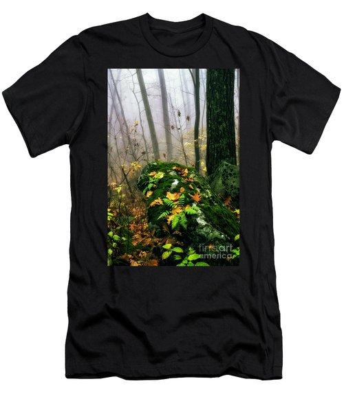 Autumn Monongahela National Forest Men's T-Shirt (Athletic Fit)