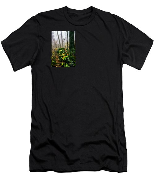 Autumn Monongahela National Forest Men's T-Shirt (Athletic Fit)