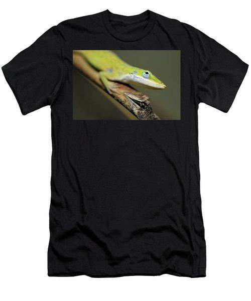 Anole Men's T-Shirt (Athletic Fit)