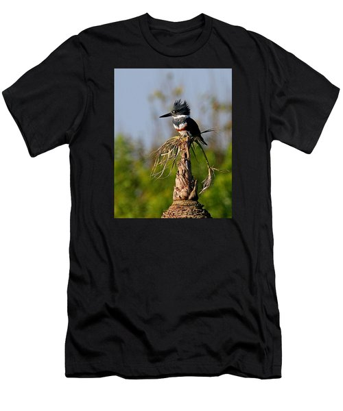 Female Belted Kingfisher Men's T-Shirt (Athletic Fit)