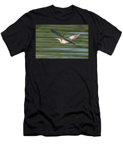 Least Bittern Men's T-Shirt (Athletic Fit)