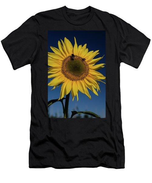 Sunflower Fields Men's T-Shirt (Athletic Fit)