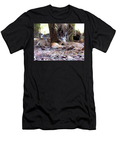 4 Wild Deer Men's T-Shirt (Slim Fit) by Rosalie Scanlon