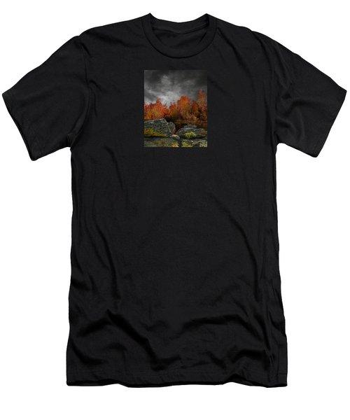 4004 Men's T-Shirt (Slim Fit) by Peter Holme III
