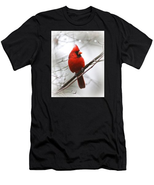 4772-001 - Northern Cardinal Men's T-Shirt (Athletic Fit)