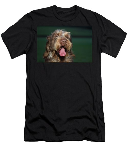 Brown Roan Italian Spinone Dog Head Shot Men's T-Shirt (Athletic Fit)