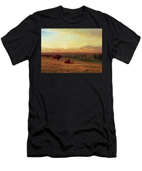 Buffalo On The Plains Men's T-Shirt (Athletic Fit)