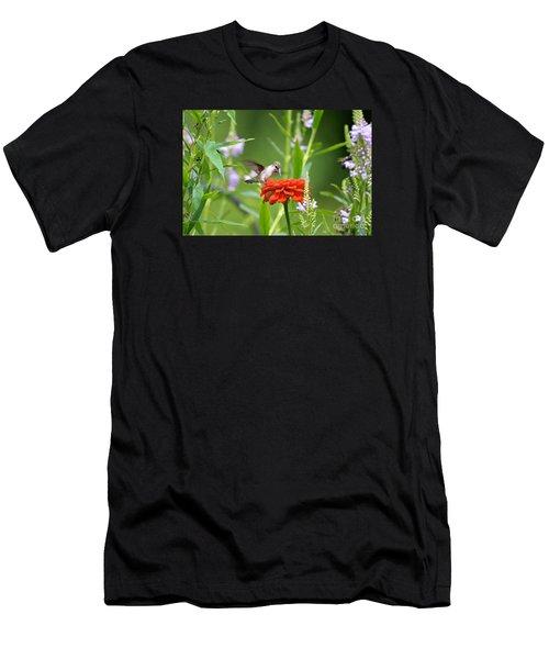 Humming Bird Men's T-Shirt (Athletic Fit)