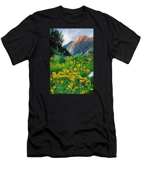 Wasatch Mountains Men's T-Shirt (Slim Fit) by Utah Images