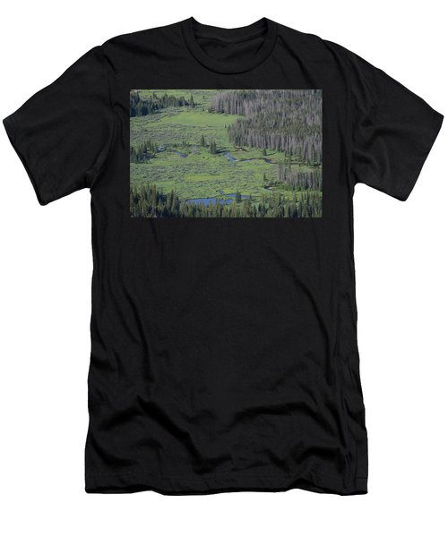 Scenery Rocky Mountain Np Co Men's T-Shirt (Athletic Fit)