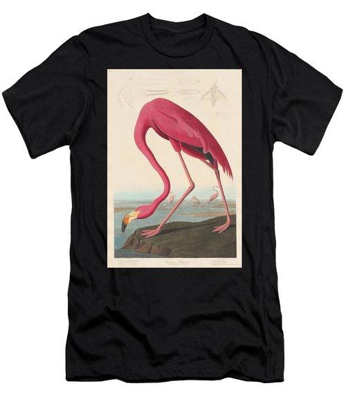 American Flamingo Men's T-Shirt (Athletic Fit)