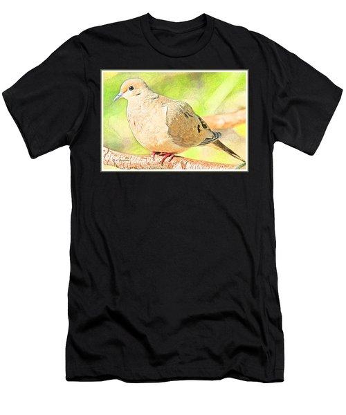 Mourning Dove Animal Portrait Men's T-Shirt (Athletic Fit)