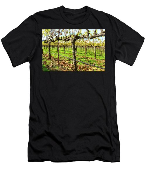 Rows Of Grapevines In Napa Valley California Men's T-Shirt (Athletic Fit)