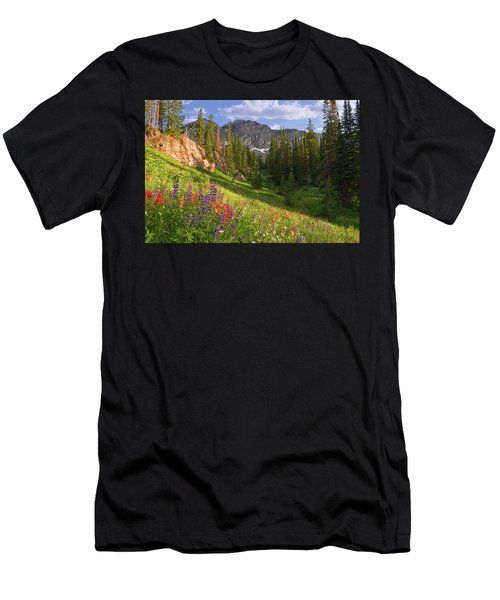 Albion Basin Wildflowers Men's T-Shirt (Athletic Fit)