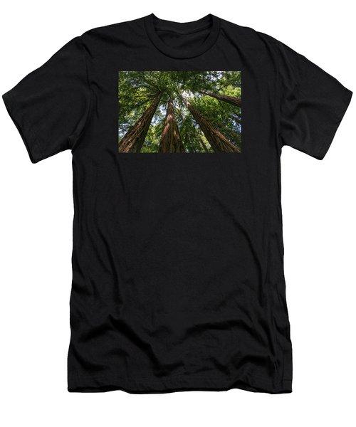 #8732 - Redwoods Men's T-Shirt (Athletic Fit)