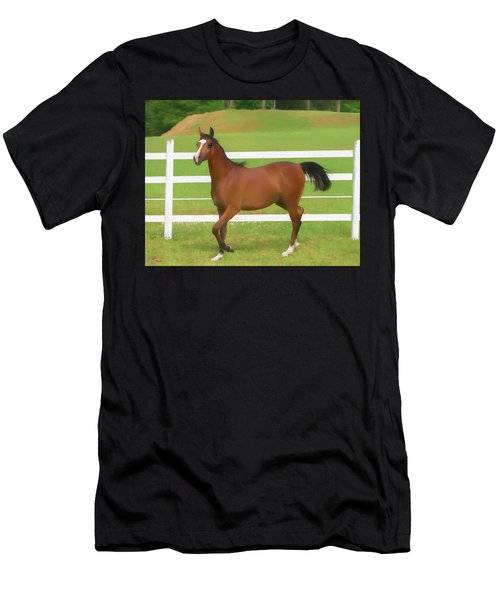 A Beautiful Arabian Filly In The Pasture. Men's T-Shirt (Athletic Fit)