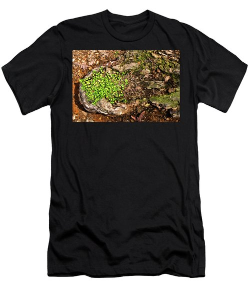 A Bowl Of Greens Men's T-Shirt (Athletic Fit)