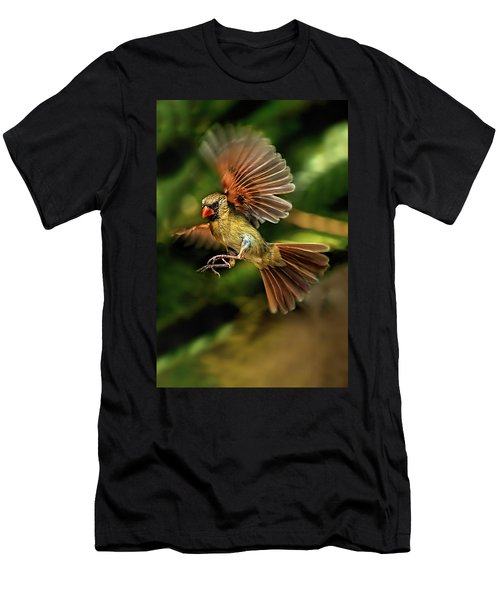A Cardinal Approaches Men's T-Shirt (Athletic Fit)