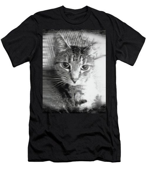 A Cat Illustration Men's T-Shirt (Athletic Fit)