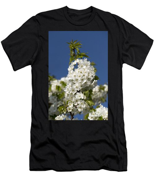 A Cluster Of Cherry Flowers Blossoming In The Springtime Men's T-Shirt (Athletic Fit)
