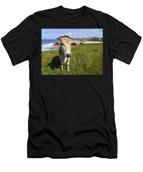A Cow At The Beach Men's T-Shirt (Athletic Fit)