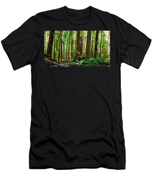A Family Of Redwoods Panorama Men's T-Shirt (Athletic Fit)