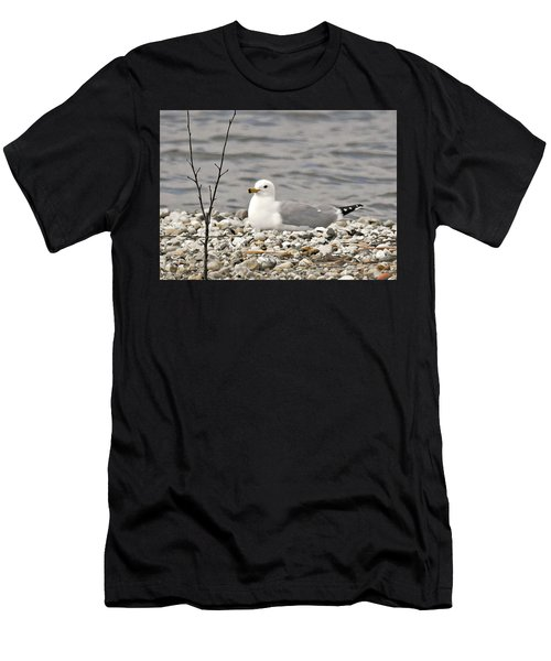 A Few Moments Of Peace Men's T-Shirt (Athletic Fit)