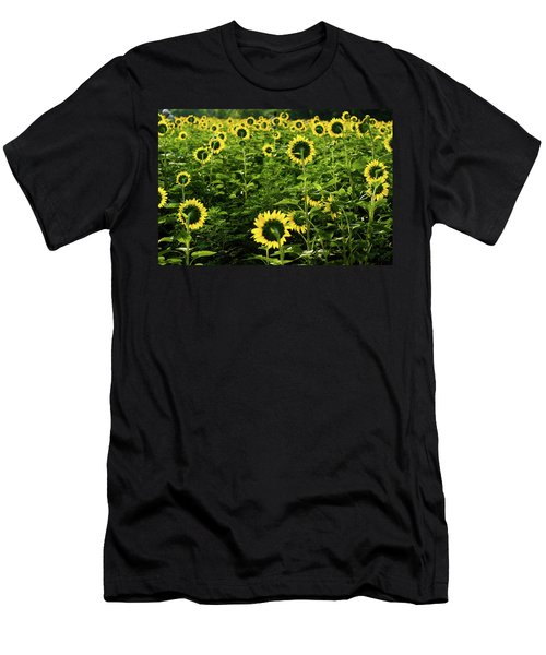A Flock Of Blooming Sunflowers Men's T-Shirt (Athletic Fit)