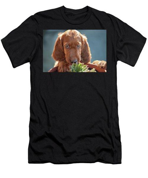 A Gardener Men's T-Shirt (Athletic Fit)