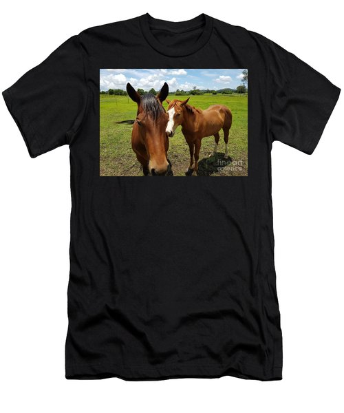 A Horse's Touch Men's T-Shirt (Athletic Fit)