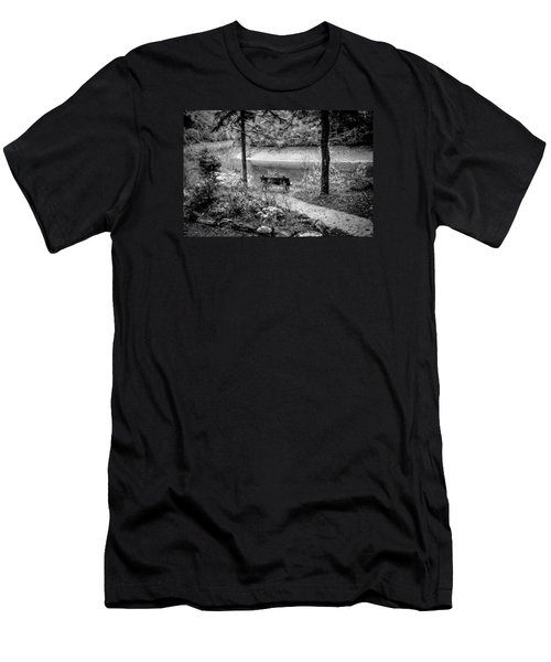 Men's T-Shirt (Slim Fit) featuring the photograph A Lone Bench By The Nantahala River by Kelly Hazel