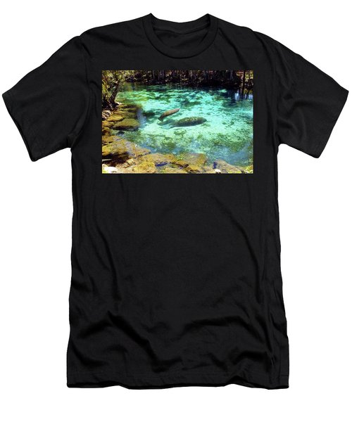 A Manatee Calf And Cow  Men's T-Shirt (Athletic Fit)
