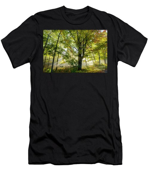 A Misty Fall Morning Men's T-Shirt (Athletic Fit)