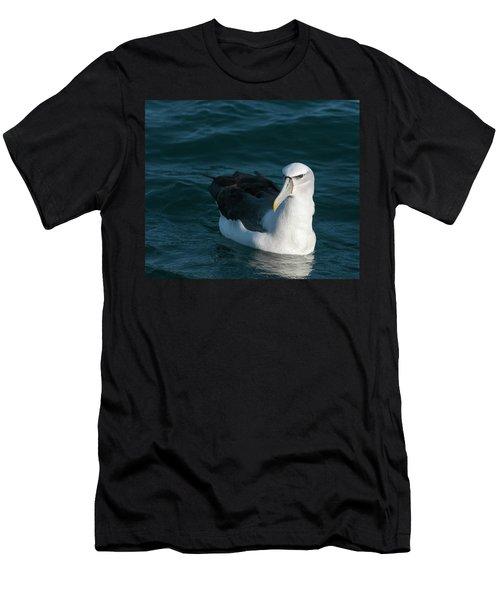 A Portrait Of An Albatross Men's T-Shirt (Athletic Fit)