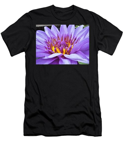 A Sliken Purple Water Lily Men's T-Shirt (Athletic Fit)