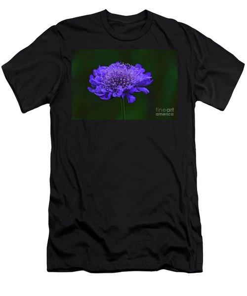 A Sweet Scabiosa Men's T-Shirt (Athletic Fit)