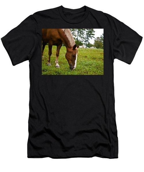 A Sweet September Men's T-Shirt (Athletic Fit)