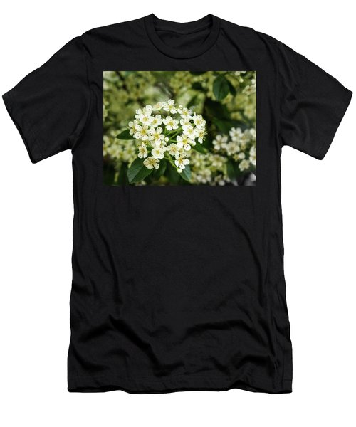 A Thousand Blossoms Men's T-Shirt (Athletic Fit)