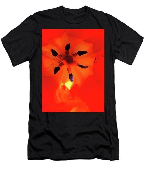 A Tulip's Secret Life Men's T-Shirt (Athletic Fit)