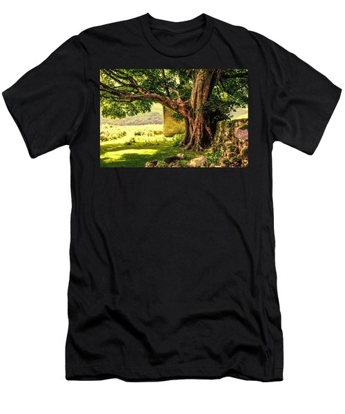 Abandoned Ruins Men's T-Shirt (Athletic Fit)