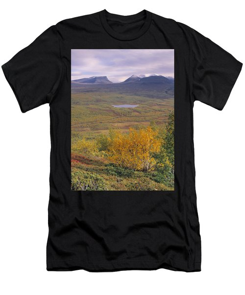 Abisko Nationalpark Men's T-Shirt (Athletic Fit)