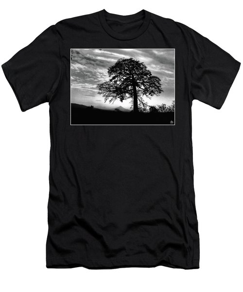 Acacia And Volcano Silhouetted Men's T-Shirt (Athletic Fit)
