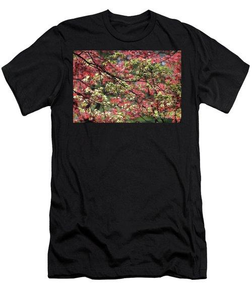 Acer Leaves In Spring Men's T-Shirt (Athletic Fit)